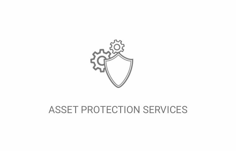Asset Protection Services
